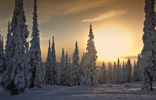 zimni-krajina
